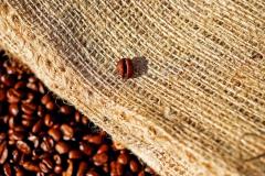 coffee-1576259_1920-1