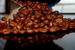 coffee-bean-257689_1920-1